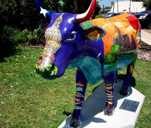 Austin cow art display